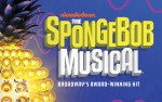 Image for THE SPONGEBOB MUSICAL (BROADWAY)